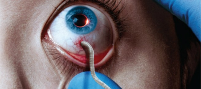 """The Strain"" Season One DVD Review"