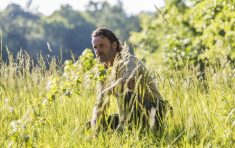 "Get Your Shittin' Pants On Because Rick Grimes Is Back In The Walking Dead ""Mercy"""